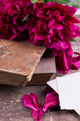 Peony and old books