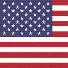 USA America Flag