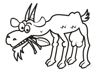 goat, coloring book