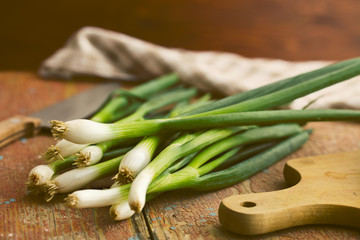 Canvas Prints Spices spring onion on old wooden table