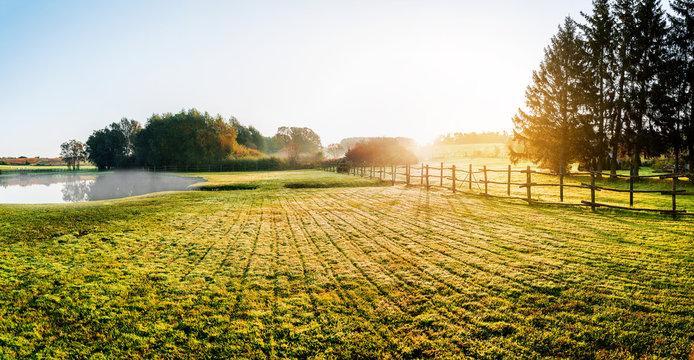 Sunrise over misty grassland