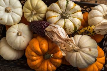 Arrangement of Pumpkins and Dried Corn