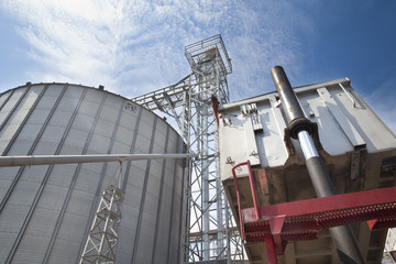 Unloading Wheat