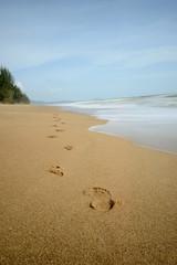 Footprints in the sand, walking away.