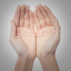 Two palms of the hand