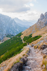 A trail in polish mountains