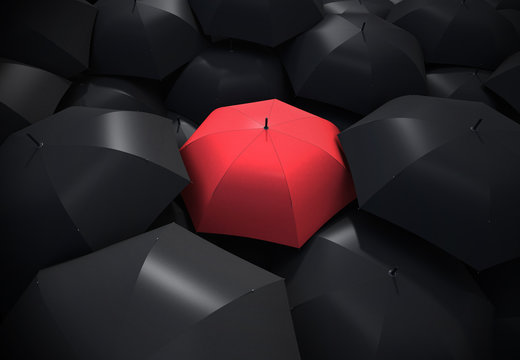 Red umbrella standing out from background of black umbrellas