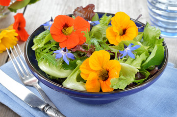 Fototapeta Salad with edible flowers nasturtium, borage. obraz