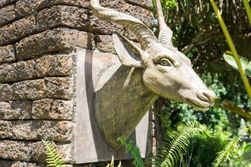 the deer head sculpture decorating in the garden