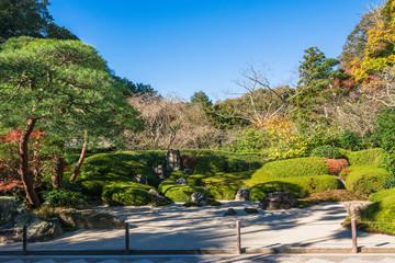 鎌倉 明月院 枯山水庭園