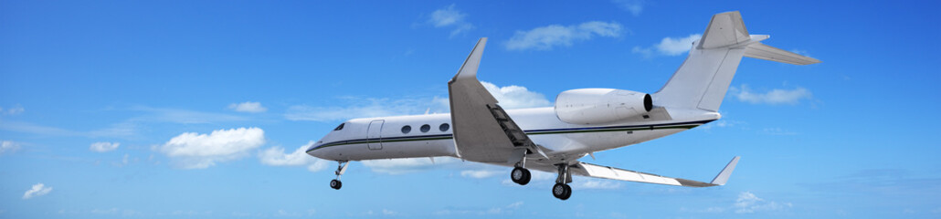 Wall Mural - Private jet in a blue sky