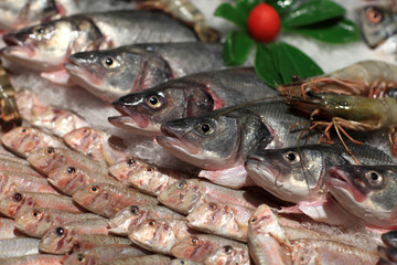 Details of fresh fishes on the counter