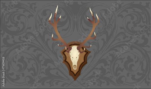 geweih vor grauer tapete mit ornamenten stockfotos und lizenzfreie vektoren auf. Black Bedroom Furniture Sets. Home Design Ideas