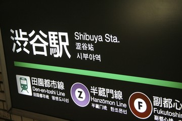Photo on textile frame Tokyo Tokyo's metro station - Shibuya