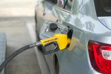 Gas Station pump - petrol