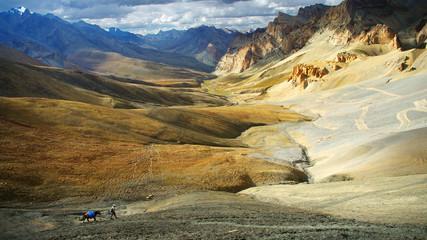 Wall Mural - Himalaya