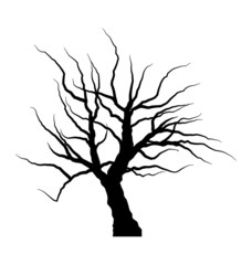 Sketch of dead tree without leaves , isolated on white backgroun