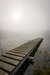 Wooden bridge in foggy scenery