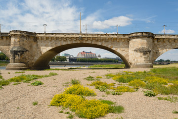 Augustus bridge over Elbe river in Dresden