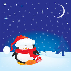 Cute little Christmas penguin on winter night background