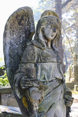 Rakowicki Cemetery, Krakow, Poland.