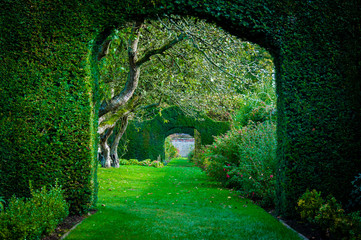 Fotorolgordijn Tuin Green plant arches in english countryside garden