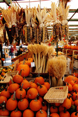 Corn and pumpkins on market.