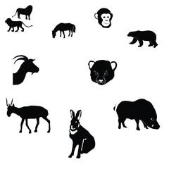 horse,rabbit,goat,saiga,polar bear,cheetah cub,monkey,wild boar,
