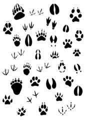 Animal footpints set