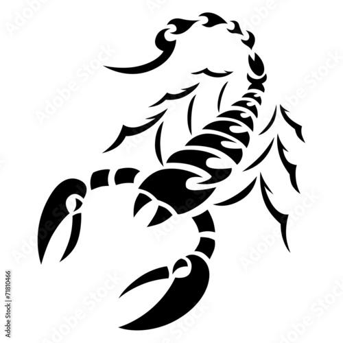 Tatouage Scorpion Tribal Photo Libre De Droits Sur La Banque D