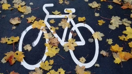 Painted bike in Autumn