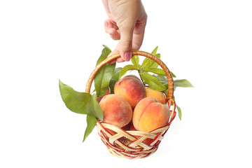 peaches in a basket isolated on white
