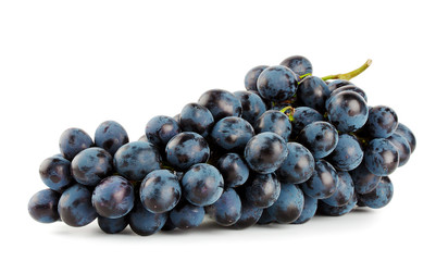 Ripe bunch of blue grapes