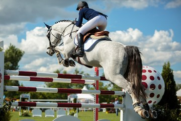 Equestrian, horse jumping, show jumping competition themed photograph.