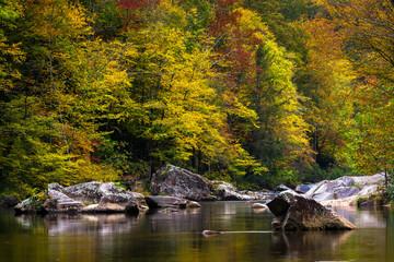Wilson Creek autumn 16