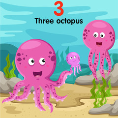 Illustrator of number three octopus