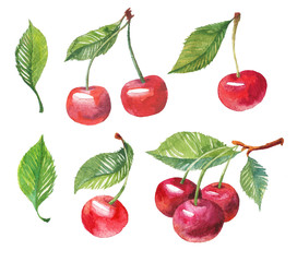 Cherry berry set with leaf. Watercolor hand drawn illustration