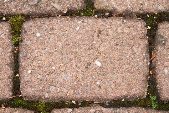 Detailaufnahme eines Rot-Braunen Pflastersteines