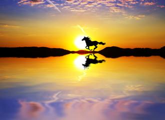 pura raza por el lago del sol