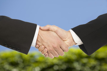 Business handshake and business people, on beautiful background