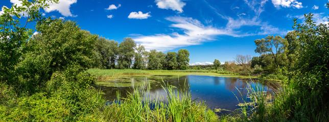 Panorama of summer morning lake
