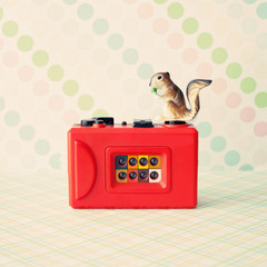 Vintage red camera with toy squirrel