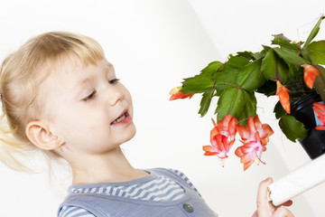 portrait of little with Christmas cactus