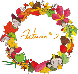 beautiful colorful autumn wreath which consists of leaves