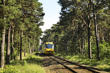 Railway in Jurata. Poland