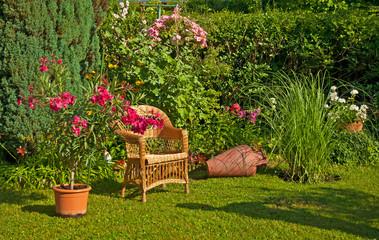 Nice oleanders in the garden