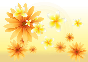 sun flower and yellow orchid background