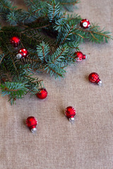 Red christmas decoration and green fir branch of christmas tree