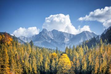 Foto auf Gartenposter Gebirge autumn alps