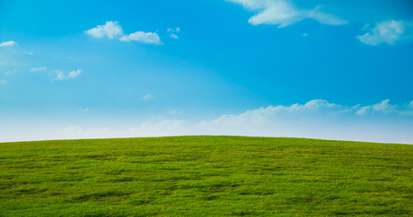 Lonesome Acres Of Green